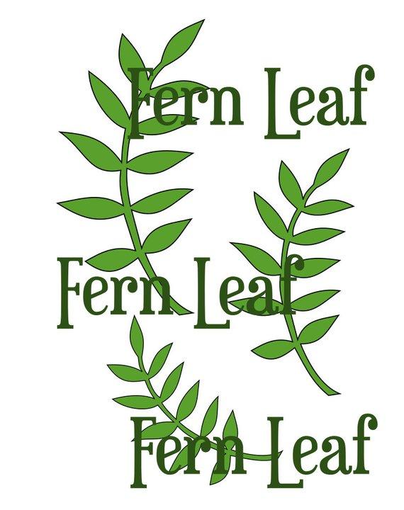 570x720 Fern Leaf Svg Cut File Leaf Template Paper Flower Templates