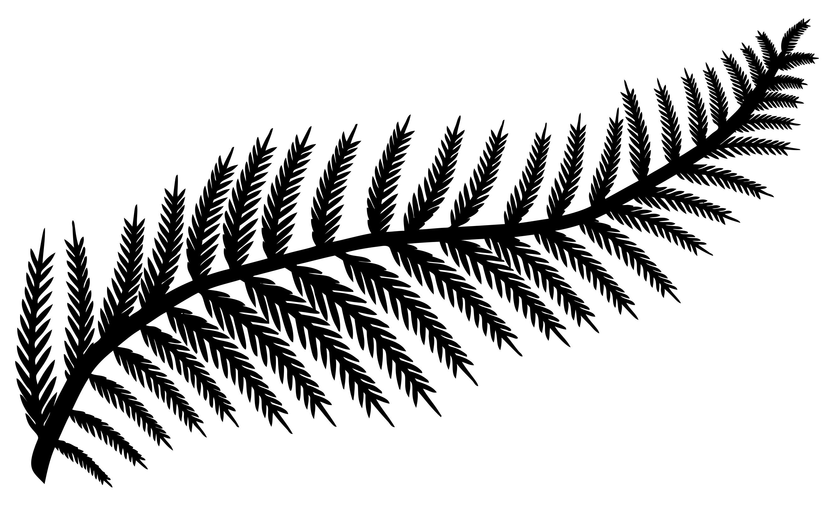 Fern Leaf Silhouette at GetDrawings.com | Free for personal use Fern ...
