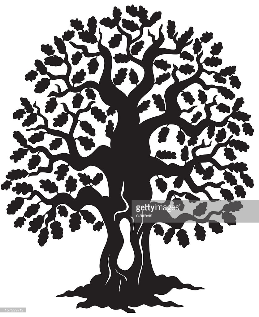 837x1024 Cartoon Oak Tree Group