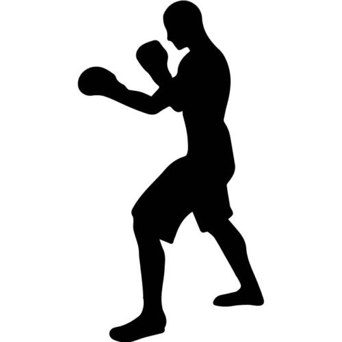 500x500 Boxer Boxing Silhouette Extreme Sports Amp Fighting Wall Stickers