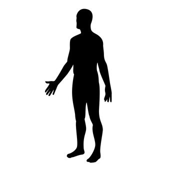 340x340 Free Silhouette Vector Body, Pictogram