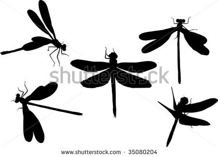 450x324 Dragonfly Silhouette Clipart Panda