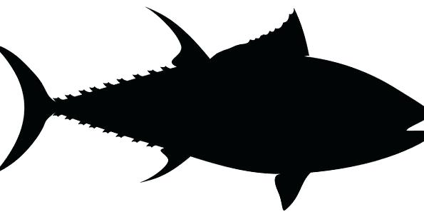 595x304 Outline Fish