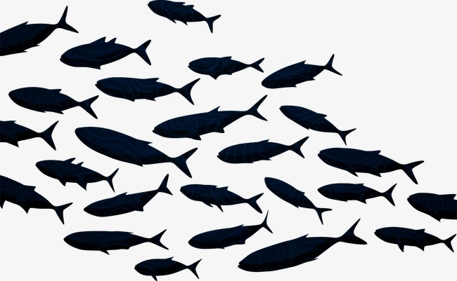 650x401 Fish Silhouette, Shoal Of Fish, Fish, Fish Png And Vector For Free