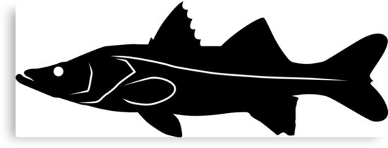 550x211 Snook Fish Silhouette (Black) Canvas Prints By Idrawsilhouettes