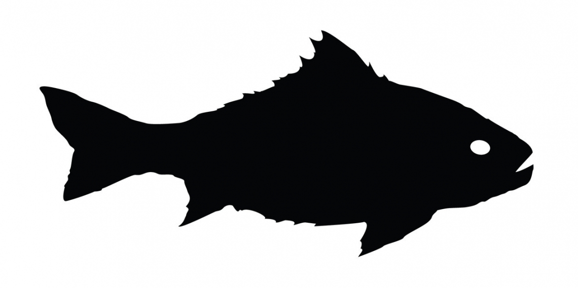 1140x569 Spiky Fish Silhouette