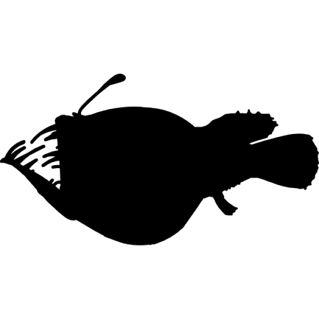 626x626 Fish Anglerfish Silhouette Icons Free Download