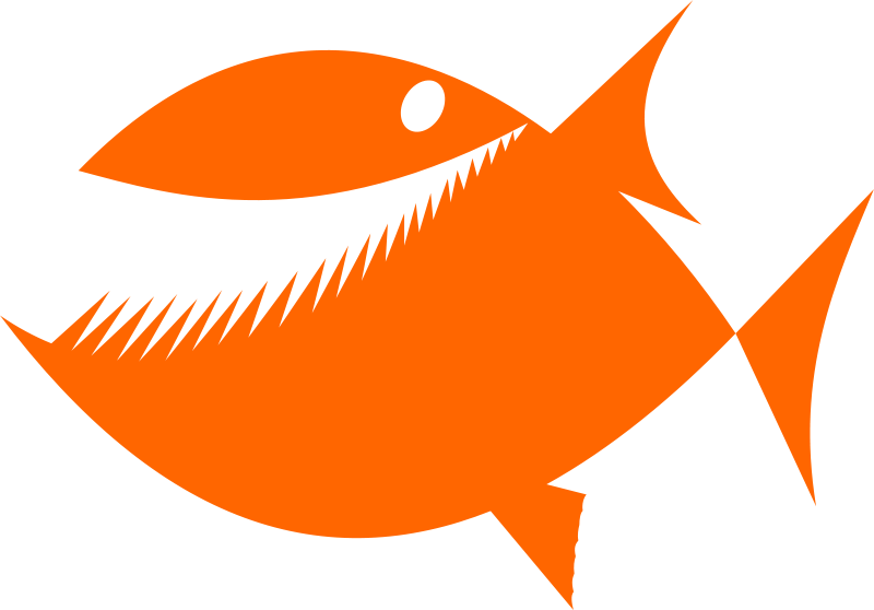 800x558 Fish Silhouette By Rones Free Vector 4vector