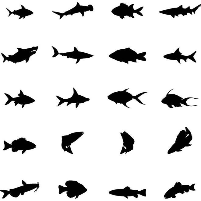 660x660 Free Vector Fish Silhouettes Vectorfree Vectors Art Amp Vector Graphics
