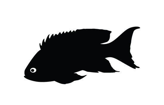 550x354 Coral Fish Silhouette Vector
