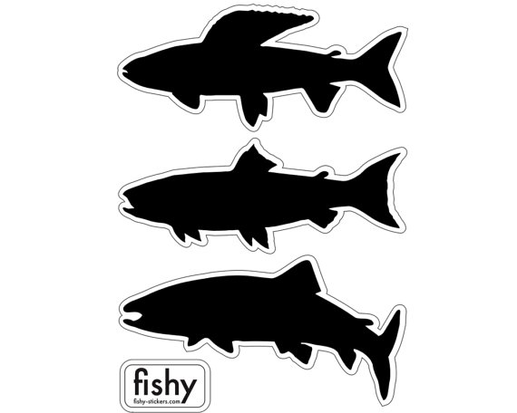 570x456 Fly Fishing Decals Grayling Trout And Salmon. Set Of 3