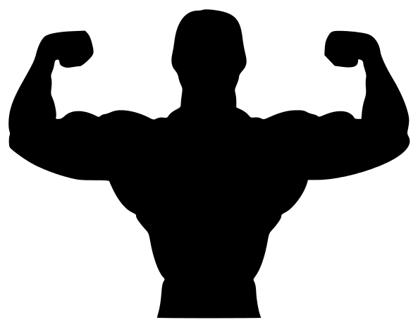 593x464 Fitness Biceps Silhouette