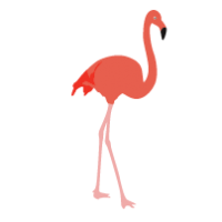 200x200 Orange Flamingo Backgrounds, Clipart, Images Etc.