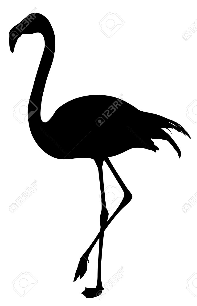 836x1300 Flamingo Silhouette On A White Background Stock Vector Clipart
