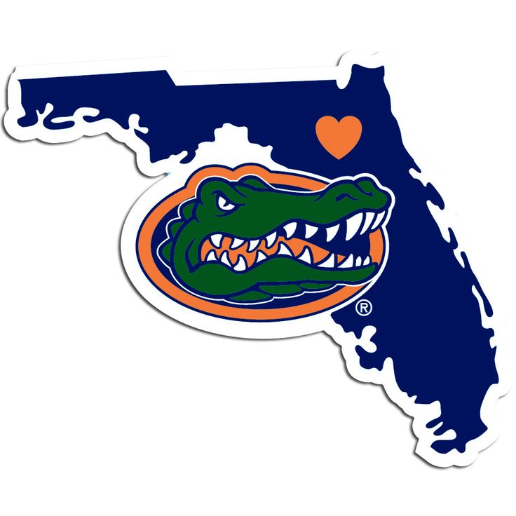736x736 5036 Best Sports Images On Florida Gators Football