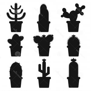 300x300 Stock Illustration Cactus Silhouettes White Background Pots Home