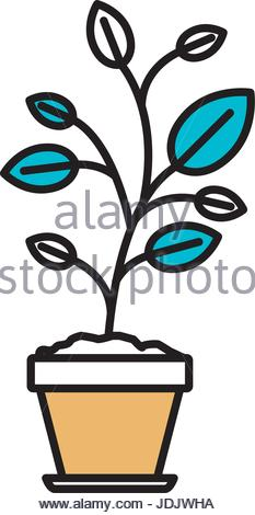 233x470 Color Sections Silhouette Of Flower Pot With Set Of Coins Stock