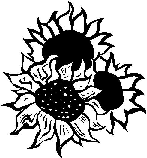 490x526 Sunflower Border Clipart Clipart Panda