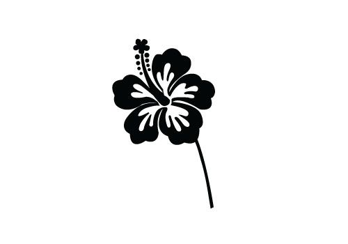 500x350 Free Hibiscus Flower Silhouette Vector