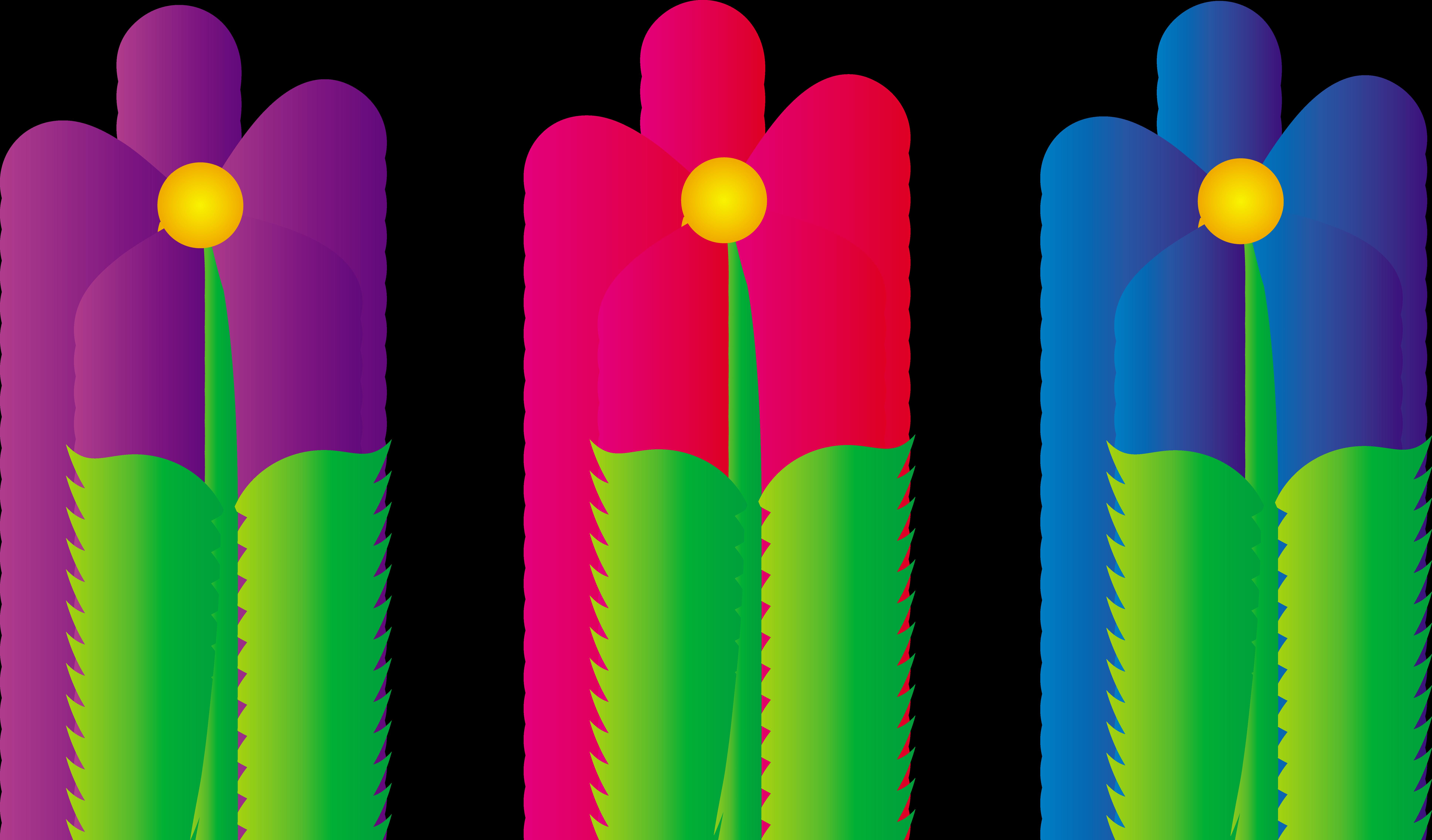 7747x4545 Adorable Clip Art Three Colorful Daisies