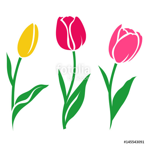500x496 Set Of Colorful Tulip Silhouette. Vector Illustration. Collection