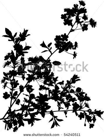 357x470 Rose Bush Silhouette