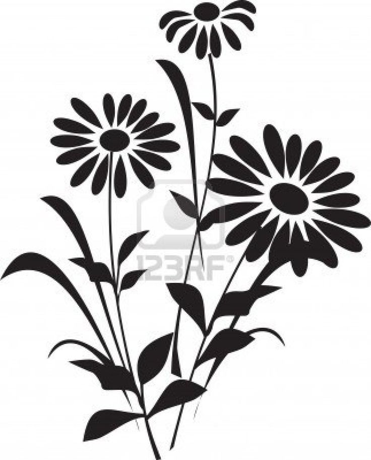 736x911 Office 2007 Clipart Library Flower Silhouette