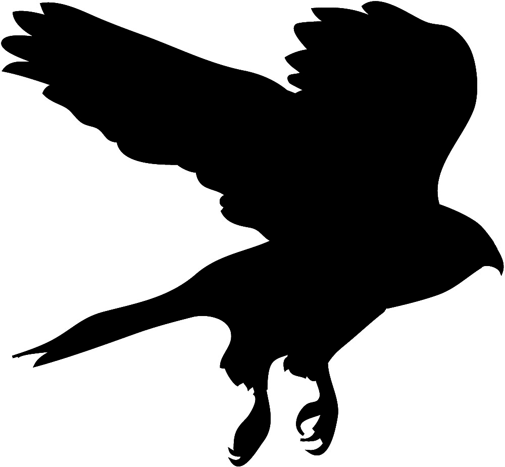 1000x925 Free Flying Hawk Clipart, Hanslodge Clip Art Collection