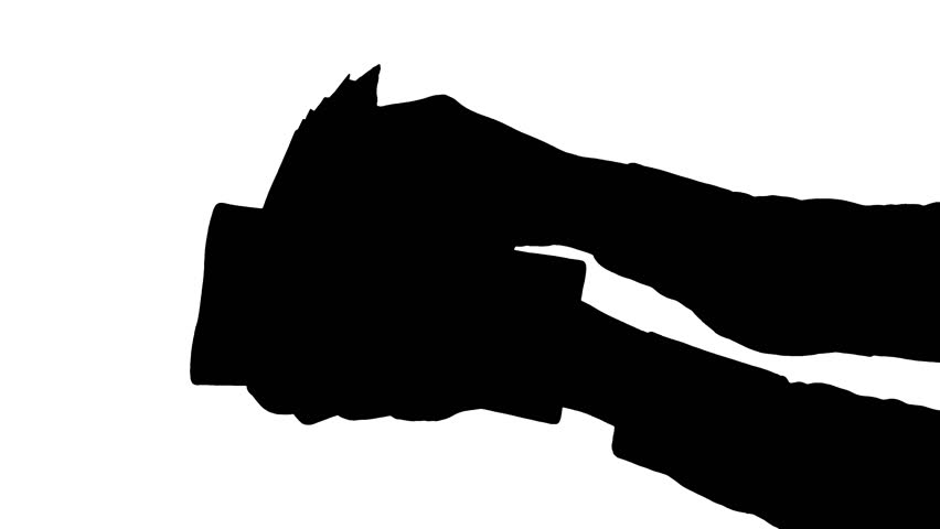 852x480 Flying Bat On The White Background. Png alpha.
