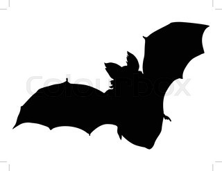 320x247 Vector Illustration Of Two Flying Bats Stock Vector Colourbox