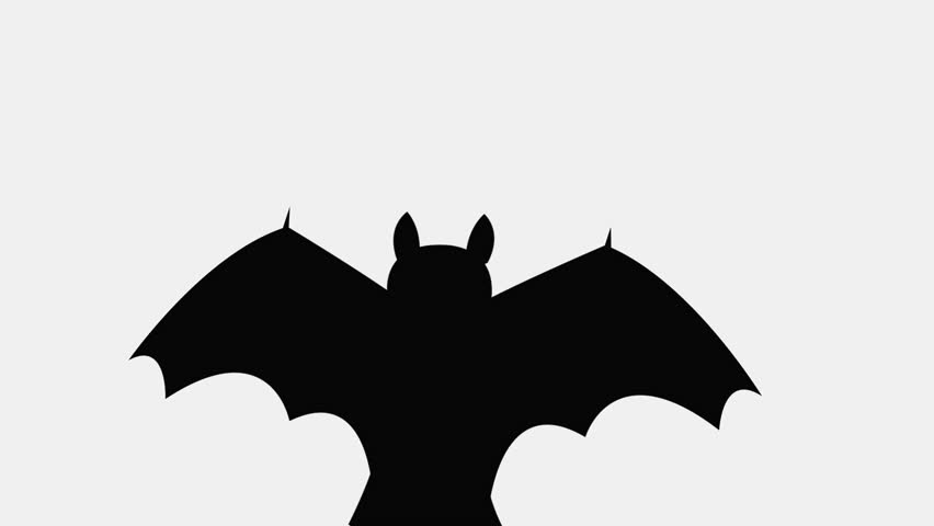 852x480 Bats Flying Isolated On White Background Stock Footage Video