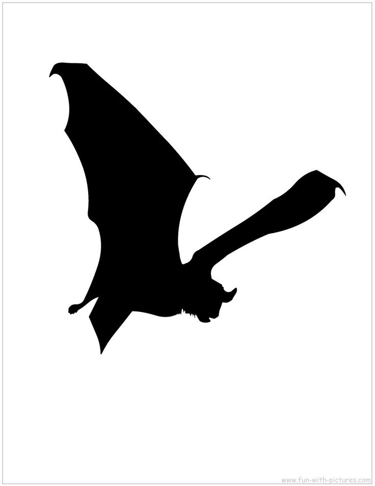 Flying Bats Silhouette