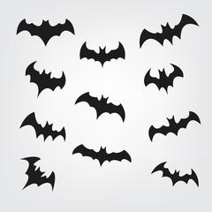 240x240 Search Photos Category Animals Gt Mammals Gt Bats