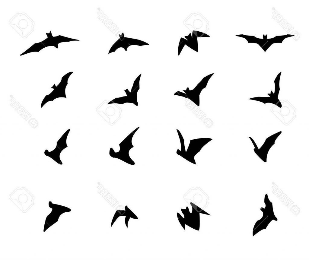 1024x862 Top 10 Set Of Flying Bat Silhouette Icons Design Cdr