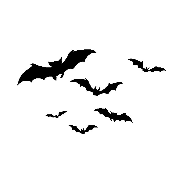 600x600 Welcome To Shady Lady's Horror Graphics Flying Bats Liked
