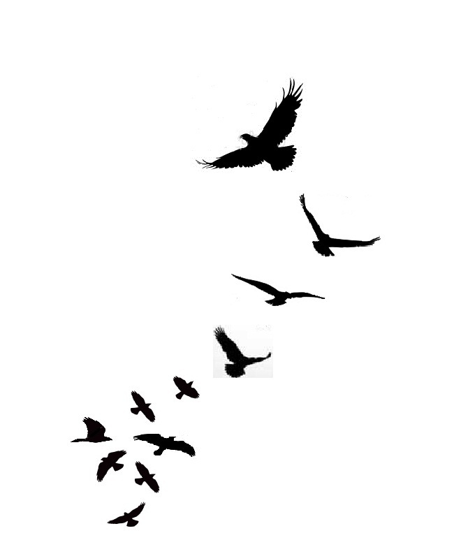 650x773 Clipart Images Of Flying Bird Free Download Best On Lemonize