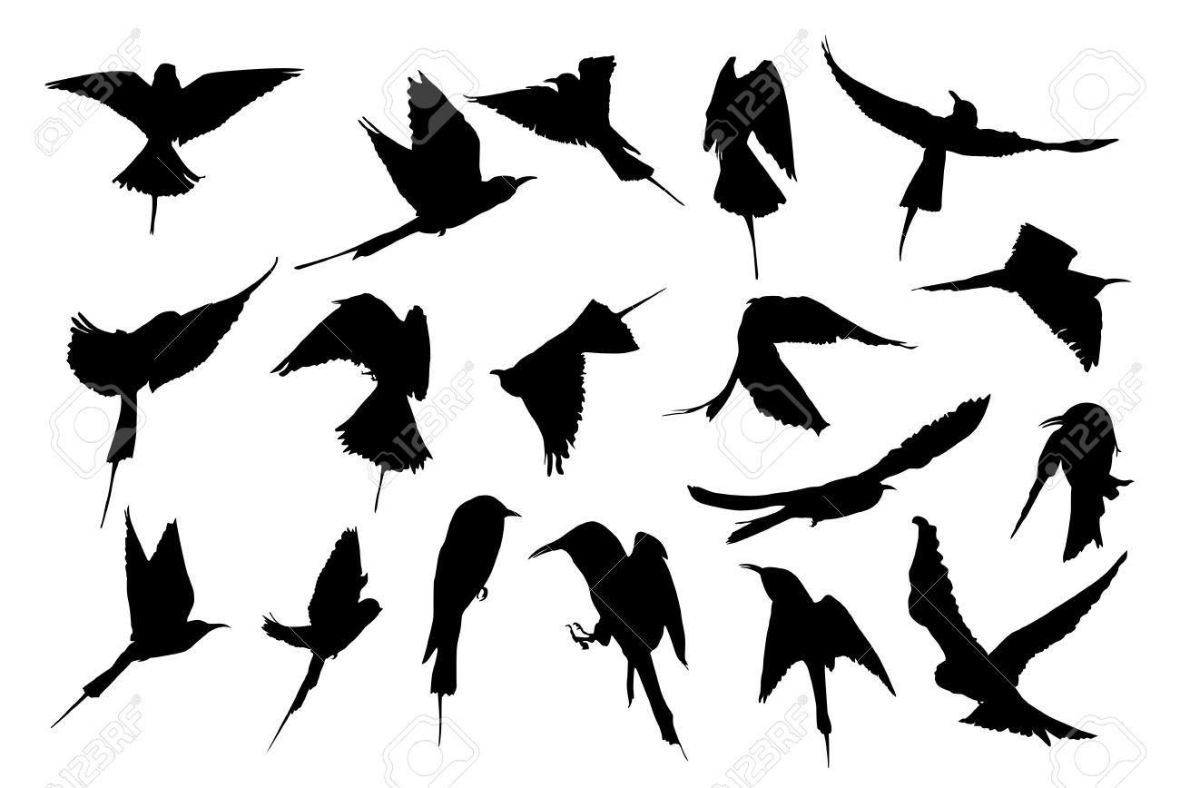 flying bird silhouette stencils at getdrawings com