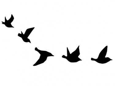 1750584d3 375x281 Flying Birds Temporary Tattoo, Small Temporary Tattoo Meylah