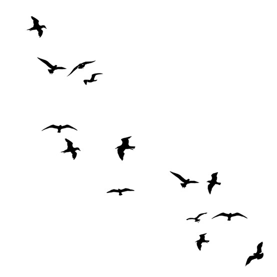 554x554 Birds Silhouette Prints Patterns Silhouettes