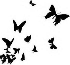 280x259 Butterfly Effect Cayley Grace