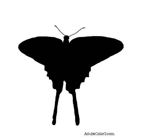 494x488 Butterfly Outline Or Silhouette Basic Butterfly Shapes