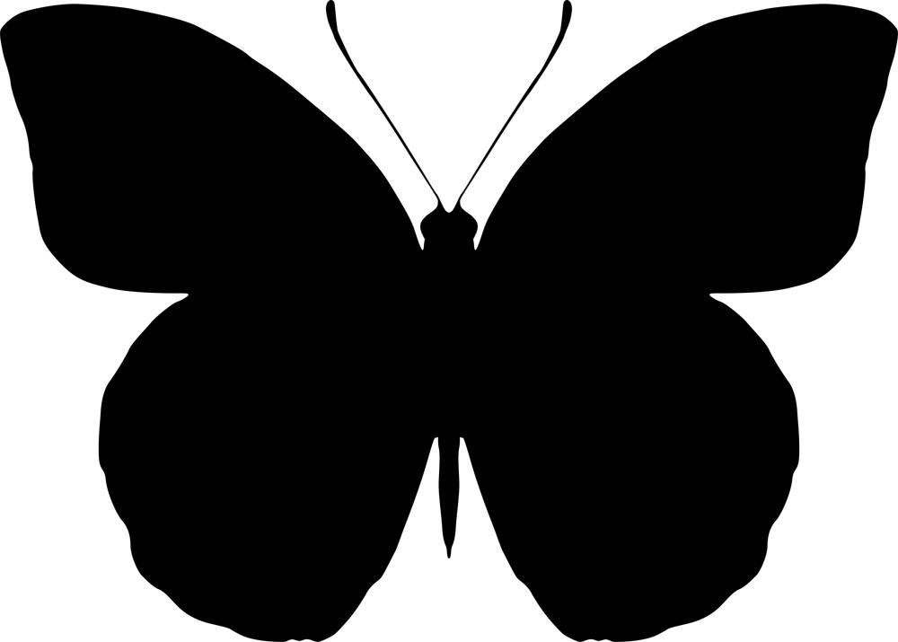 1000x715 Butterfly Silhouette Vector