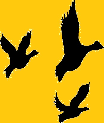 Flying Duck Silhouette at GetDrawings.com | Free for personal use ...