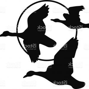 300x300 Vector Isolated Silhouette Goose Duck Createmepink