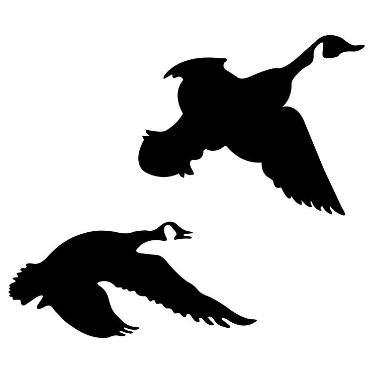 736x736 Flying Goose Silhouette Free Vector For Free Download About (5