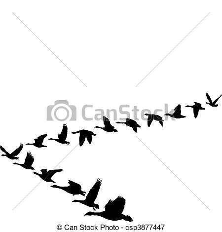 450x470 Geese Flying In The Shape Of Unit. Black And White Vectors