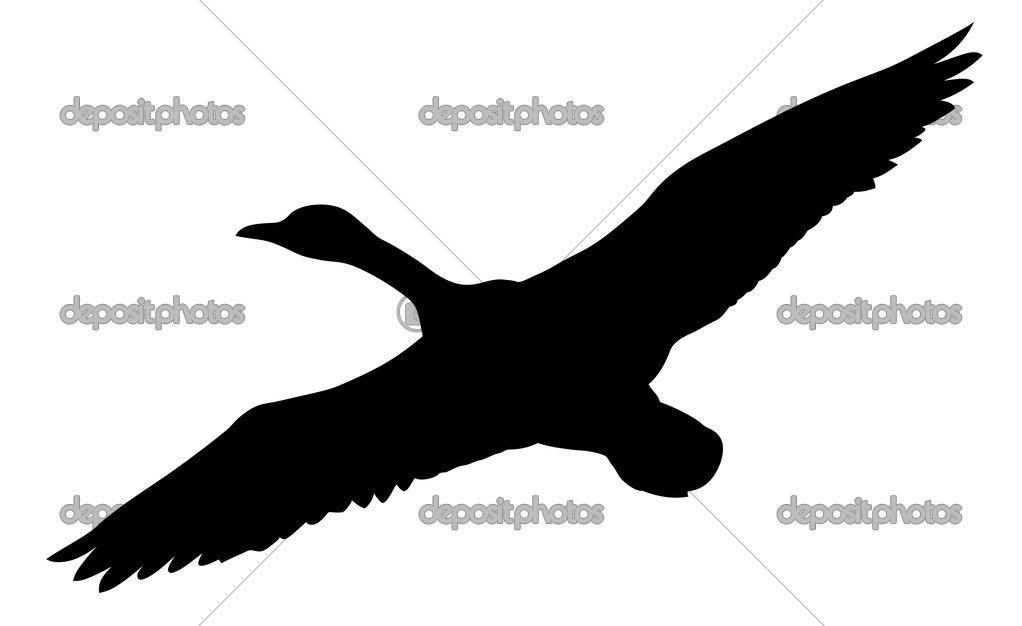 1022x626 Depositphotos 6603151 Vector Silhouette Flying Ducks On White