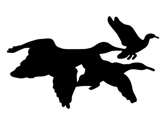 570x456 Flying Geese Decal , Geese Hunter Sticker , Geese Silhouette