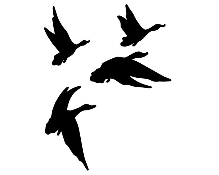 Flying Goose Silhouette