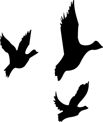 350x415 Flying Duck Silhouette